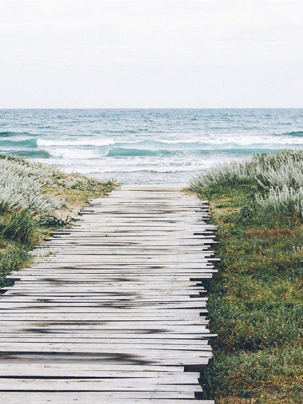 planks, jetty, ocean